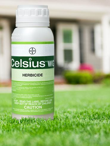 Bayer Celsius WG Product Shot